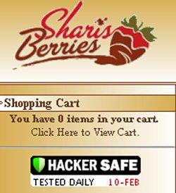 ScanAlert's Hacker Safe Logo