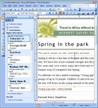 email newsletter font schemes screenshot