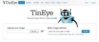 TinEye.com screen shot; free Web tool