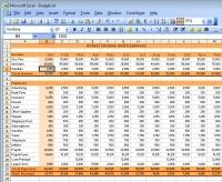 Excel cash flow actuals; small business solution