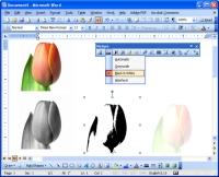 Color tool screen shot