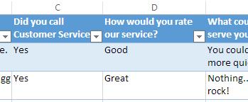 Survey responses in the Excel worksheet